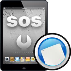 Αλλαγή Πίσω όψης iPad mini2