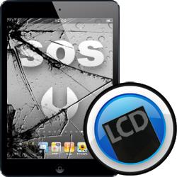 Αλλαγή Οθόνης LCD iPad mini2