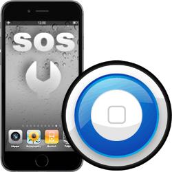 Επισκευή home button iPhone 6 Plus